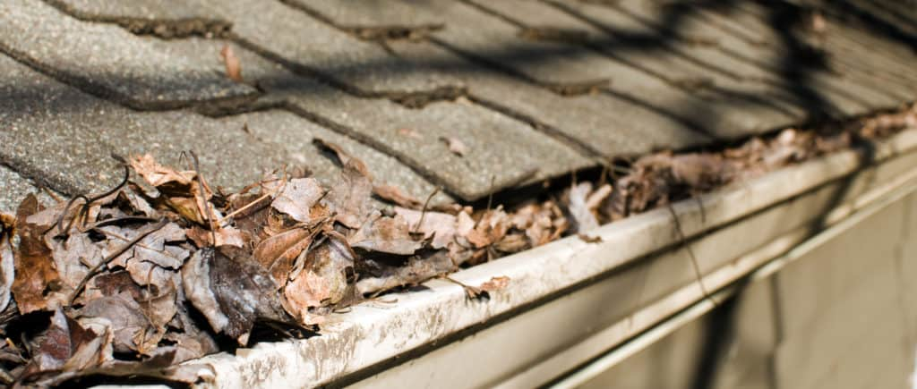 Memphis house roof gutter filled with leaves autumn