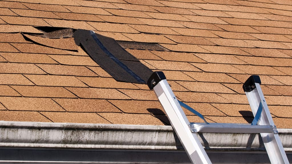 Roofing - Memphis 1